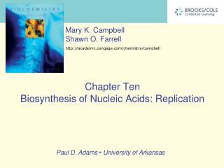 Chapter Ten Biosynthesis of Nucleic Acids: Replication