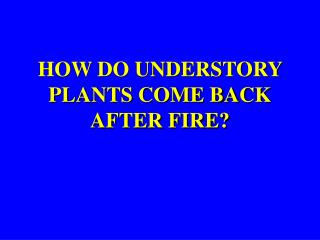 HOW DO UNDERSTORY PLANTS COME BACK AFTER FIRE?