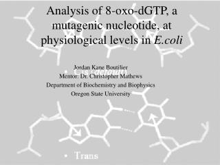 Analysis of 8-oxo-dGTP, a mutagenic nucleotide, at physiological levels in  E.coli