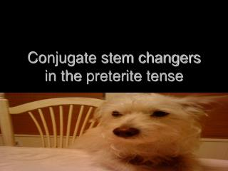 Conjugate stem changers in the  preterite  tense