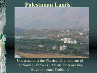 Palestinian Lands :