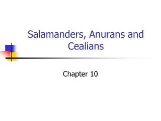 Salamanders, Anurans and Cealians