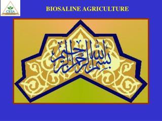 BIOSALINE AGRICULTURE