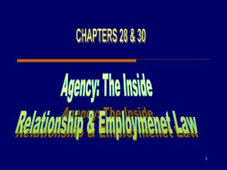 Agency: The Inside Relationship & Employmenet Law