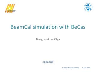 BeamCal simulation with BeCas