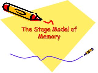 The Stage Model of Memory