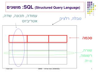 SQL  (Structured Query Language) : מושגים