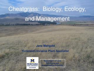 Cheatgrass:  Biology, Ecology, and Management
