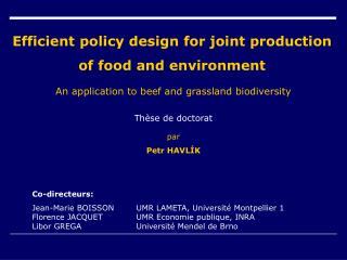 Efficient policy design for joint production of food and environment