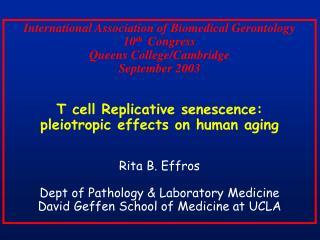International Association of Biomedical Gerontology 10 th Congress Queens College/Cambridge September 2003 T cell Rep