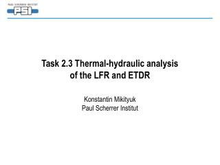 Task 2.3 Thermal-hydraulic analysis  of the LFR and ETDR