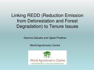 Linking REDD (Reduction Emission from Deforestation and Forest Degradation) to Tenure Issues