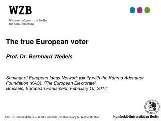 A true European voter?