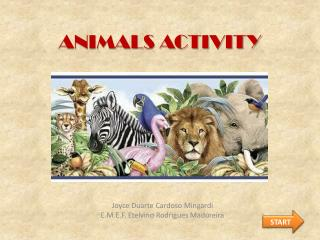 ANIMALS ACTIVITY