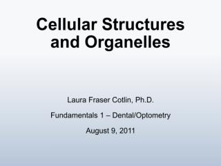 Cellular Structures and Organelles