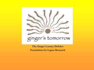 The Ginger Launey DeSalvo  Foundation for Lupus Research