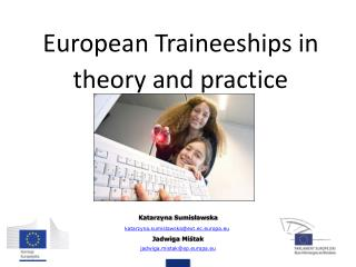 European Traineeships in theory and practice