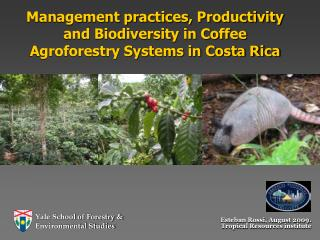 Management practices, Productivity and Biodiversity in Coffee Agroforestry Systems in Costa Rica