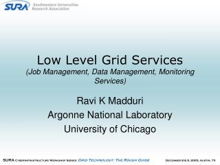 Low Level Grid Services    (Job Management, Data Management, Monitoring Services)