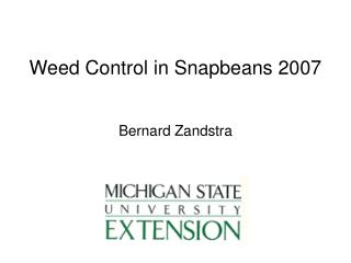 Weed Control in Snapbeans 2007
