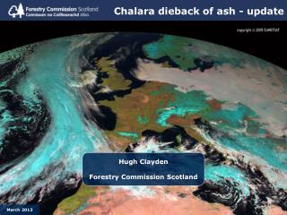 Chalara dieback of ash - update