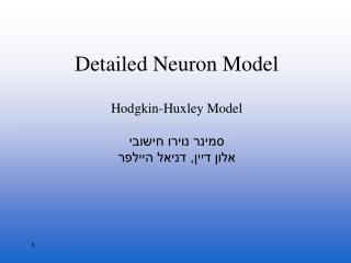 Detailed Neuron Model