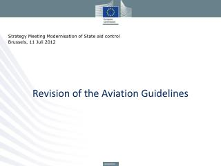 Revision of the Aviation Guidelines