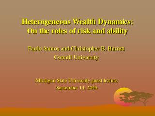 Heterogeneous Wealth Dynamics: On the roles of risk and ability