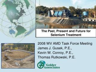 The Past, Present and Future for Selenium Treatment
