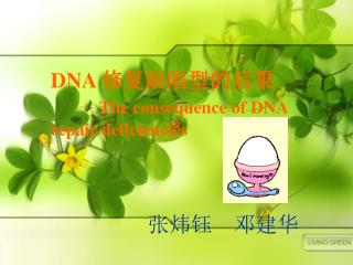 DNA  ???????? The consequence of DNA repair deficiencies