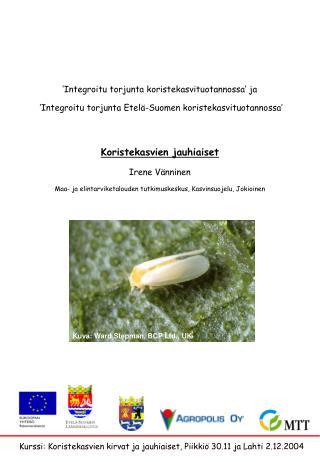 Kurssi: Koristekasvien kirvat ja jauhiaiset, Piikkiö 30.11 ja Lahti 2.12.2004