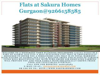 Flats at Sakura Homes Gurgaon@9266158585