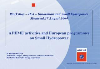 Workshop – IEA – Innovation and Small hydropower Montreal,17 August 2004
