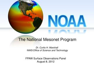 FPAW Surface Observations Panel August 8, 2012