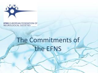 The Commitments of the EFNS