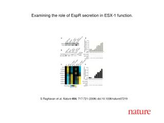S Raghavan  et al. Nature 454 , 717-721 (2008) doi:10.1038/nature07219