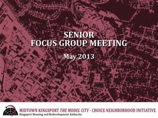 SENIOR FOCUS GROUP MEETING May 2013