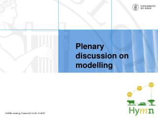 Plenary discussion on modelling