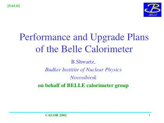 Performance and Upgrade Plans of the Belle Calorimeter