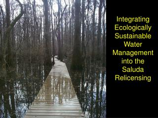 Integrating Ecologically Sustainable Water Management into the Saluda Relicensing
