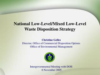 National Low-Level/Mixed Low-Level Waste Disposition Strategy