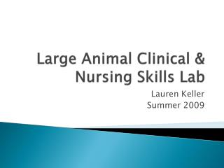 Large Animal Clinical & Nursing Lab Skills Project