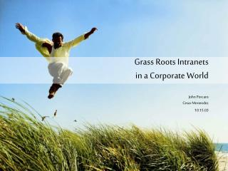 Grass Roots Intranets in a Corporate World