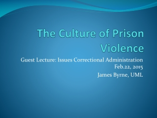 Theories of Prison Violence