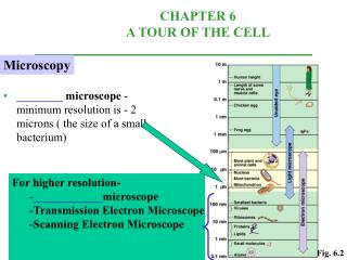 ________  microscope  -minimum resolution is - 2 microns ( the size of a small bacterium)