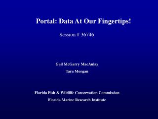 Portal: Data At Our Fingertips!