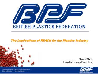 The Implications of REACH for the Plastics Industry