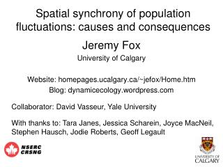 Spatial synchrony of population fluctuations: causes and consequences