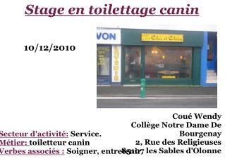 Stage en toilettage canin