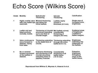 Echo Score (Wilkins Score)